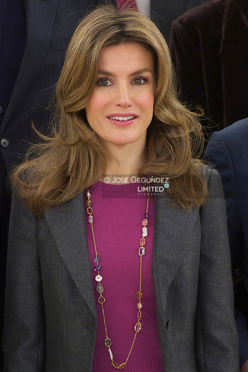 Princess Letizia attends an Audience to a representation of the Spanish Association Against Cancer at Palacio de la Zarzuela in Madrid