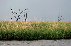 07 June 2010. Pointe aux Chenes, Louisiana.<br /> Fading away. A simple marker placed in the marsh is all the denotes the old indian cemetery that has sunk into the wetlands just south of the isolated town of Pointe Aux Chenes. The town clings to the little land that remains along the bayous and waterways of southern Louisiana. Oil washes up on the  marsh grasses just south of tribal homes. If the grass dies, there is nothing left to hold the land. All of this was solid ground just 100 years ago. Diversion of the mighty Mississippi River diverted sediment from the wetlands and deposited precious land building material deep out at sea.  At present, all these fishing grounds are closed. Members of the Pointe aux Chenes Indians, settlers that can trace their roots beyond 5 generations back to France face extinction of their very way of life, their very existence. French cajun is the language of the elders, but is dying out in the children of today. BP's catastrophic oil spill threatens everything, their way of life and the land on which they live. Not recognised by the federal government, the 680 member tribe struggles for funds in a small community that survives only because of fishing and oil extraction in the Gulf of Mexico.<br /> Photo; Charlie Varley/varleypix.com