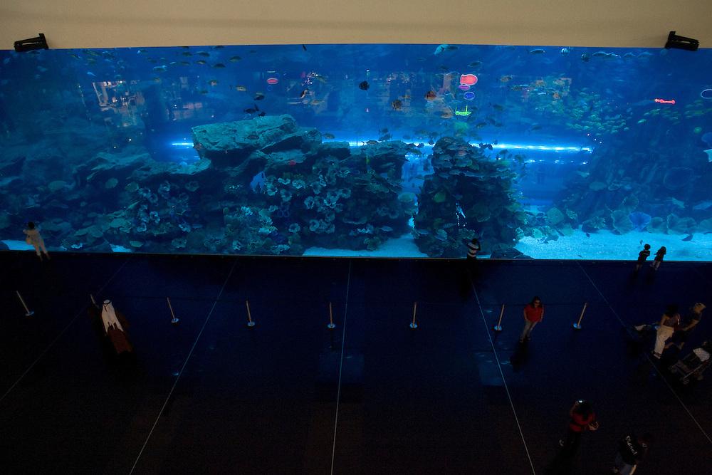 Dubai Mall Aquarium, Dubai, United Arab Emirates, Saturday, August 21, 2010. Credit:SNPA / Ben Campbell