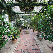 The gardens at Dumbarton Oaks, an historic estate in the heart of Washington DC's Georgetown neighborhood. It was the residence and gardens of Robert Woods Bliss (1875–1962) and his wife Mildred Barnes Bliss (1879–1969).