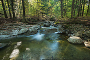 Adirondack Mountain Reserve, NY.<br /> I followed the Gill Brook Trail on this morning, headed to the Fish Hawk Cliffs.  A faster hike up follows a cutoff from the Lake Road further on, but why miss the sound of this beautiful little stream as it makes it's way down to the East Branch of the Ausable River? Low, early autumn flows let me get a vantage point mid-stream below this little pool.