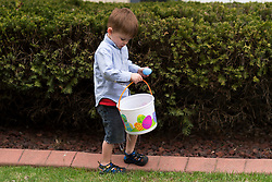 Jackson Priest, 3 hunting Easter eggs, Sunday, April 05, 2015 at Anne's House in Louisville. <br /> <br /> Priest Family Portrait