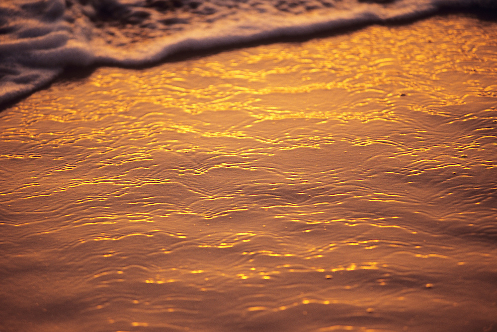 Hawaii, Maui, The Valley Island, golden reflection on wave swept sand