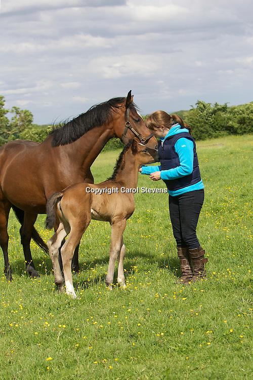 Josie and Pippa (born 9 June 2012)