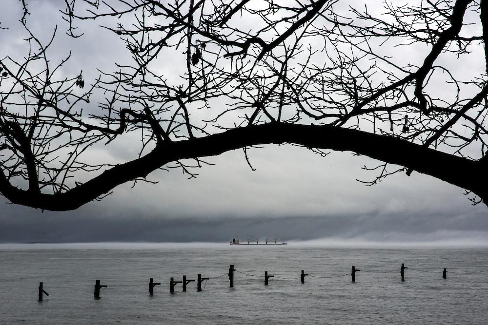 Annapolis, Maryland - January 11, 2014: The Chesapeake Bay on a foggy, rainy day from the Bay Ridge neighborhood in Annapolis, Maryland. CREDIT: Matt Roth