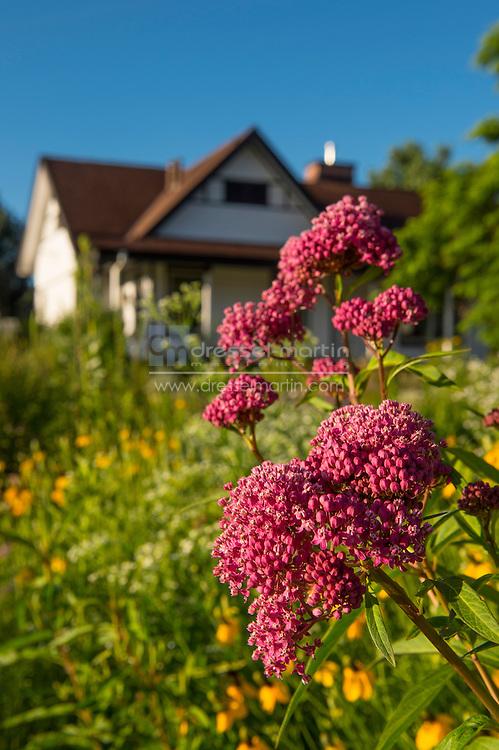 chatfield visitors center garden