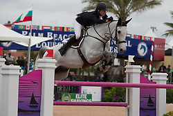 Sweetnam Shane (IRL) - Traffic Boy<br /> Horseware GP CSI 2*<br /> Wellington 2012<br /> © Hippo Foto - Cealy Tetly