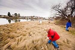 A boy picking up trash as part of a beach clean-up sponsored by the Blue Ocean Society on Pierce Island in Portsmouth, New Hampshire.