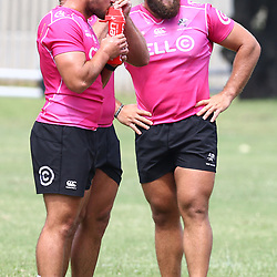 DURBAN, SOUTH AFRICA - FEBRUARY 12: Franco Marais with Thomas du Toit during the Cell C Sharks training session at Growthpoint Kings Park on February 12, 2018 in Durban, South Africa. (Photo by Steve Haag/Gallo Images)