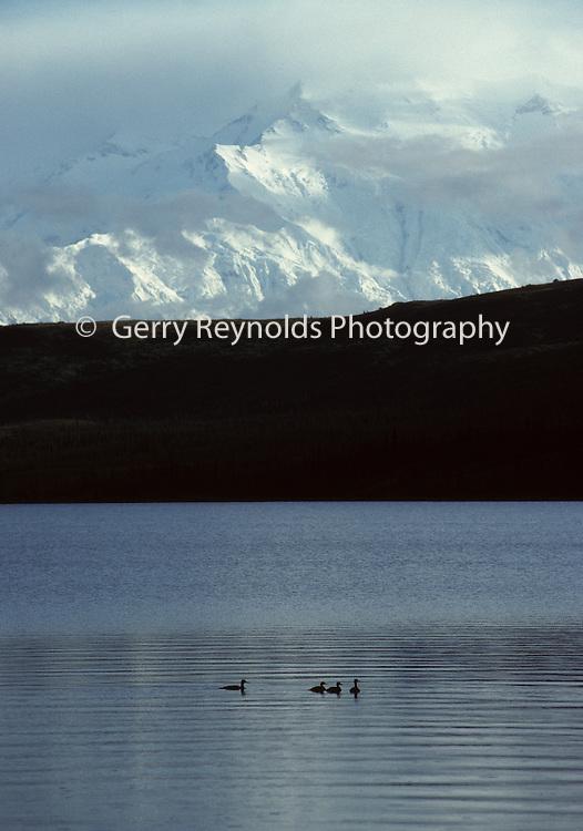 Mount McKinley, Wonder Lake, Sunset, Reflection, Denali National Park, Alaska