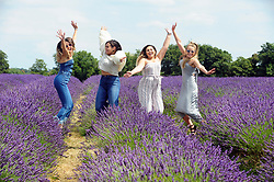 © Licensed to London News Pictures. 19/07/2018. Banstead, UK. A group of young women pose for a photograph amongst a field of Lavender plants at Mayfield Lavender Farm in Banstead. Photo credit: Grant Falvey/LNP