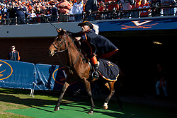 Oct 22, 2011; Charlottesville VA, USA;  The Virginia Cavaliers mascot enters the field on horseback before the game against the North Carolina State Wolfpack at Scott Stadium.  North Carolina State defeated Virginia 28-14. Mandatory Credit: Jason O. Watson-US PRESSWIRE