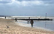Wandelen en hond uilaten op het strand van Den Haag | Walking on the beach of The Hague, Netherlands during early spring.