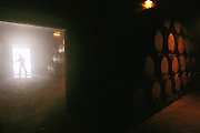 Wine aging cellars of the Granja Nuestra Senora de Remelluri, S.A. winery, in Labastida.  Rioja, Spain.
