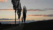 Landstrasse bei Alterswil: immer noch stark von der Landwirtschaft geprägtes Landschaftsbild der Dörfer im Sensebezirk des Kantons Freiburg. Le paysage du district de la Singine du Canton de Fribourg demeure fortement marqué par l'agriculture. © Romano P. Riedo