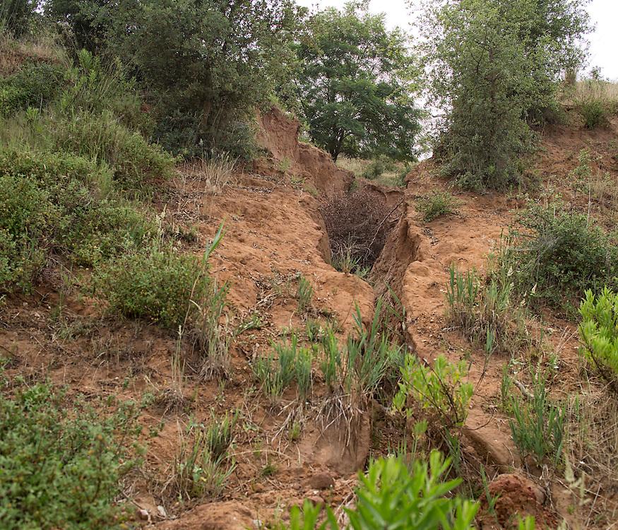 Ex cava non bonificata. Frana causata dall'abbandono dell'area senza una adeguata cura del terreno.<br /> <br /> Ex sandpit not reclaimed. Landslide cused by not reclaimed area