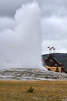 Old Faithfull Inn and Geyser, Yellowstone National Park   Photo: Peter Llewellyn