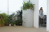 Office worker using phone in office potted plants in adjoining room