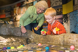 United States, Washington, Bellevue, KidsQuest Children's Museum, grandmother and boy playing at Waterways exhibit