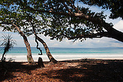 Pristine beaches of the Andaman