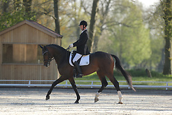 Lüders, Ronald, Quantaz<br /> Redefin - Pferdefestival 2015<br /> Dressurpferde Kl. L für 5j Pferde<br /> © www.sportfotos-lafrentz.de/Stefan Lafrentz