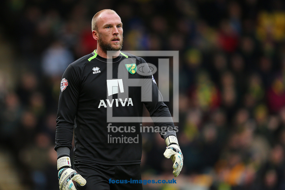 John Ruddy of Norwich City during the Sky Bet Championship match at Carrow Road, Norwich<br /> Picture by Richard Calver/Focus Images Ltd +447792 981244<br /> 07/02/2015