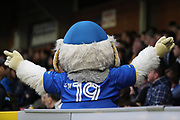 Haydon the Womble with arms out during the The FA Cup match between AFC Wimbledon and Lincoln City at the Cherry Red Records Stadium, Kingston, England on 4 November 2017. Photo by Matthew Redman.