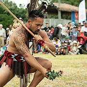 Waitangi Day Festival 2020