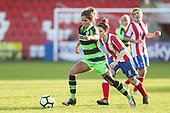 Cheltenham Town Ladies FC v Forest Green Rovers Ladies FC 191117
