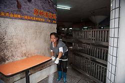 60827064 <br />  A worker disinfects the booth where samples were found positive at Kangqiao meat and vegetable market in Longgang District of Shenzhen City, south China s Guangdong Province, Dec. 13, 2013. Samples taken from two live poultry markets in Shenzhen have tested positive for H7N9 bird flu, the Guangdong provincial health authority confirmed on Wednesday. Guangdong health authorities warned the public to be aware of H7N9 transmission risks. The poultry markets where samples tested positive were asked to close for a week, Friday, 13th December 2013. Picture by  imago / i-Images