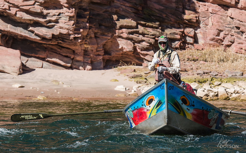 This angler, and the drift boat's eyes, appear to be hunting the edge of the big Green River seams for rising trout. Great luck of the Irish hat can't hurt.