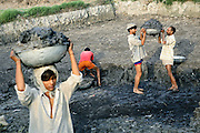 Workers are collecting chemical sludge outside a local paper mill in the village of Saini, pop. 4000, Meerut District, Uttar Pradesh, India, to be then sold at the price of Rs 3000 for a full tractor, on Wednesday, Mar. 19, 2008. The sludge, used to manufacture boxes and invitation cards, come to create when heavily contaminated waters discharged by the paper mill mix with the mud nearby, while also penetrating the soil and reaching the aquifers the population of Saini has been reliant on for generations.