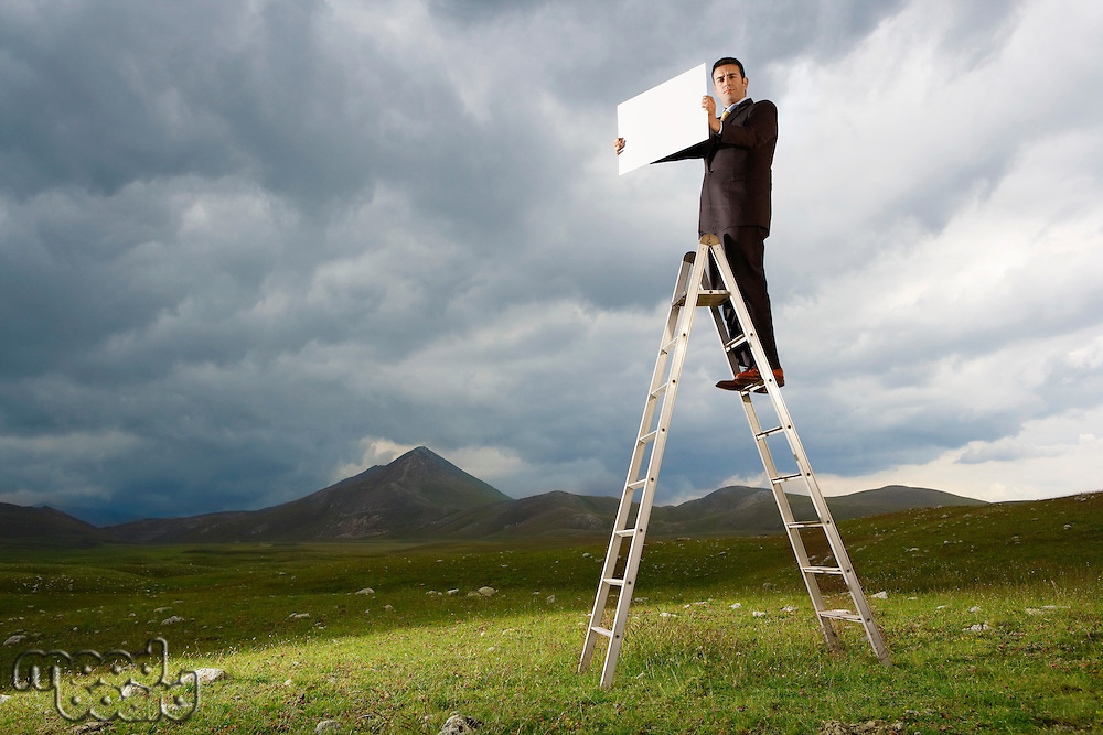 Businessman Standing on a Ladder in mountain field holding sign