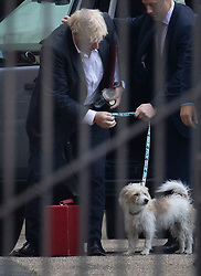 © Licensed to London News Pictures. 14/09/2020. London, UK. Prime Minister Boris Johnson arrives at Downing Street with his dog Dilyn. Later MPs will vote on the Government's controversial Internal Market Bill which may break international law. Photo credit: Peter Macdiarmid/LNP