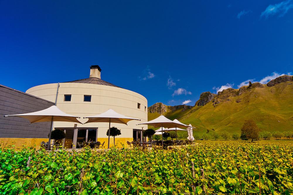 Vineyards of the Craggy Range Winery (Te Mata Peak in background), Havelock North, Hawkes Bay, North Island, New Zealand