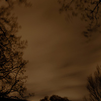 A strong wind blows clouds and trees in the nighttime creating a frame suitable for a book cover or other illustration.