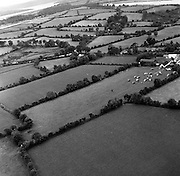 Aerial view of the Kennedy homestead at Dunganstown.  The small building (on the left of foreground of present house) is the original house.<br /> 27.06.1963