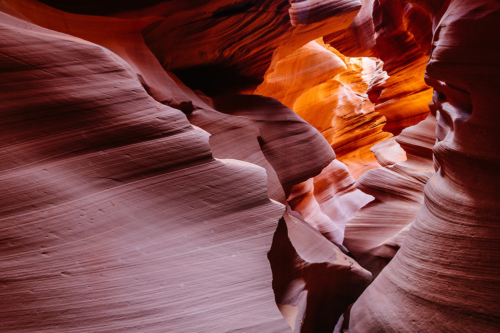 Erosion of Navajo Sandstone by water has resulted in the dramatic contours of Lower Antelope Canyon, Antelope Canyon Navajo Tribal Park, northeast Arizona, USA.