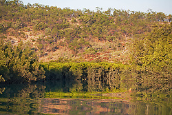 Mangrove reflections at Shoal Bay on the Kimberley coast.