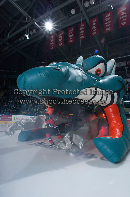 KELOWNA, CANADA - NOVEMBER 1:  Cole Martin #8 of the Kelowna Rockets enters the ice against the Kamloops Blazers at the Kelowna Rockets on November 1, 2012 at Prospera Place in Kelowna, British Columbia, Canada (Photo by Marissa Baecker/Shoot the Breeze) *** Local Caption ***
