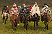Ecuadorian Chagras (cowboys)<br /> Yanahurco Hacienda (Ranch) - largest privately owned ranch in Ecuadorian Andes (25.000 hectares)<br /> base of Cotopaxi Volcano<br /> Andes<br /> ECUADOR.  South America
