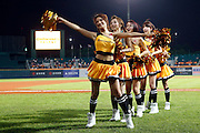 NEW TAIPEI CITY, TAIWAN - NOVEMBER 15:  Cheerleaders are seen on the field before Game 2 of the 2013 World Baseball Classic Qualifier between Team New Zealand and Team Chinese Taipei at Xinzhuang Stadium in New Taipei City, Taiwan on Thursday, November 15, 2012.  Photo by Yuki Taguchi/WBCI/MLB Photos