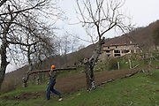Since the eighties, the Mountain near Pistoia, in Italy,  hosts one of the most original of the Italian intentional community movement: The people of the Elves. At present there are over fifteen self-sufficiency nucleus, some even an hour's walk away on foot. The majority of homes are without electricity<br />