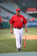 ANAHEIM, CA - MAY 17:  Manager Mike Scioscia #14 of the Los Angeles Angels of Anaheim watches batting practice before the game against the Tampa Bay Rays at Angel Stadium on Saturday, May 17, 2014 in Anaheim, California. The Angels won the game in a 6-0 shutout. (Photo by Paul Spinelli/MLB Photos via Getty Images) *** Local Caption *** Mike Scioscia