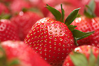 Strawberries, close-up