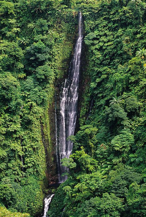 Western Samoa, Papapapai-Tai Waterfall.