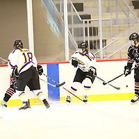 Women's Ice Hockey: Hamline University Pipers vs. University of Wisconsin-Stevens Point Pointers