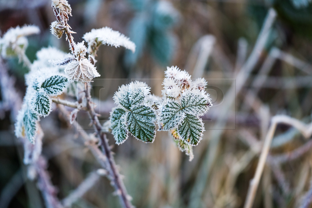 © Licensed to London News Pictures. 4/01/2019. Aberystwyth, UK. A cold and frosty start to the day in Aberystwyth , west Wales after a night of clear skies as a static high pressure system dominates the weather over the country. Photo credit: Keith Morris/LNP