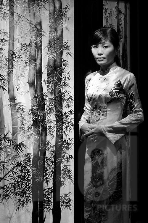Portraiture of a young vietnamese woman wearing traditional dress Ao Dai. Vietnam, Asia.