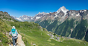 In the alpine meadows of Lötschental above Lauchernalp gondola lift station, see the Bietschhorn (3934 m/12,907 ft) in canton Valais/Wallis, Switzerland, the Alps, Europe. The northeast and southern slopes of the Bietschhorn are in Jungfrau-Aletsch Protected Area, a UNESCO World Heritage Site. Kandersteg is a great base for hiking: an epic hike from Selden in Bern canton traverses Lötsch glacier and Lötschenpass (Lötschepass) to neighboring Lötschental in Valais canton; hiking poles are recommended for snow and rocks. The walk starts with a reserved Postbus ride from Kandersteg to Selden (in Gasterntal / Gasteretal / Gasterental), climbs 1350 meters, descends 925 m, and ends 13 km later at Lauchernalp lift station, which descends to Wiler in Lötschental, to reach Goppenstein via Postbus, back to Kandersteg via train. You can also reverse the route or stay overnight in dorms at Lötschepass hut. This image was stitched from multiple overlapping photos.